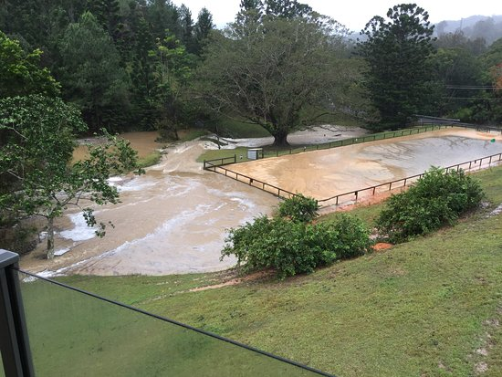 Tallebudgera, ออสเตรเลีย: View of my Dressage Arena after heavy rain.