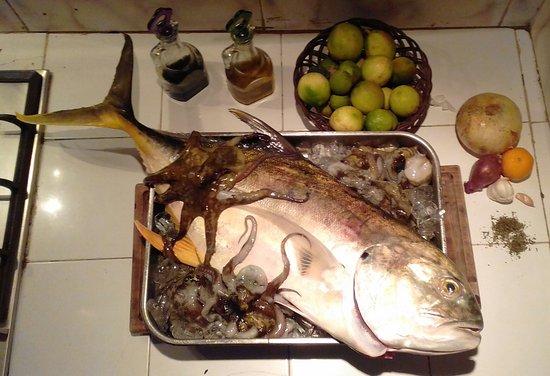 Portobelo, Panamá: Urel y Pulpos recien pescados!