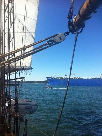 Anacortes, WA: Just out of the Cape Sante marina