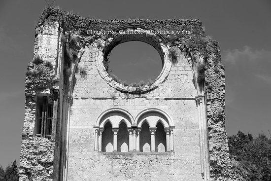 هوت نورماندي, فرنسا: les ruines