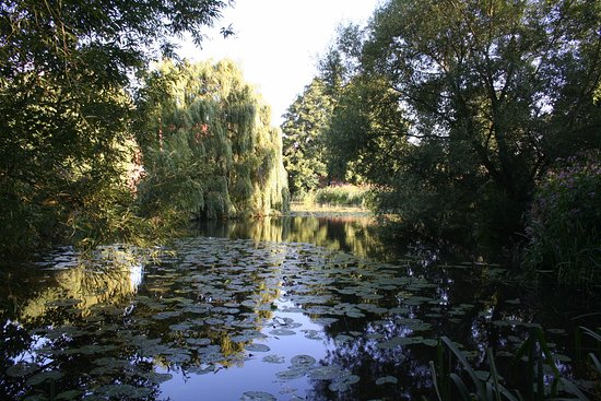 Алстер, UK: The mill pond