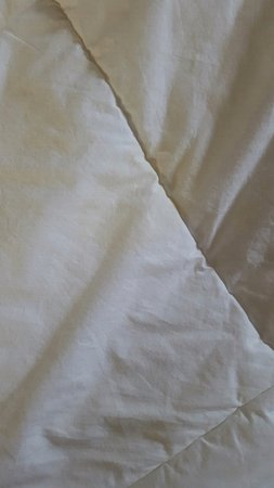 Econolodge Oceanblock: yellow stains on comforters