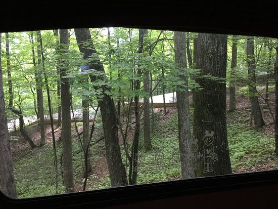 Cedar Mountain, Carolina del Norte: View out of the back of our motorhome to sites 'behind' us