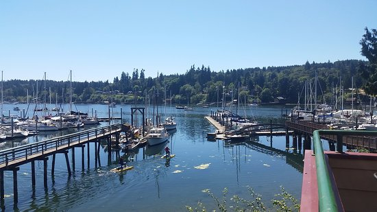 Bainbridge Island, WA: View