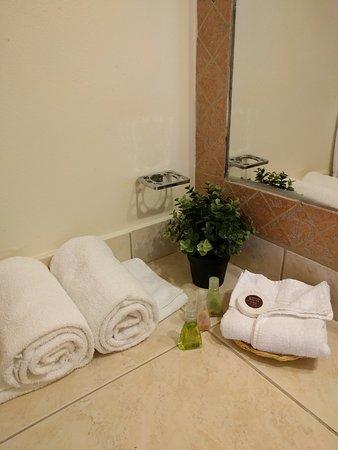 Hotel El Almendro Managua: Bathroom