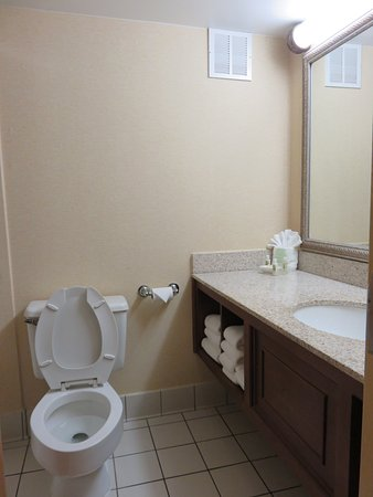 Holiday Inn Pigeon Forge: Plenty of counter space in bathroom
