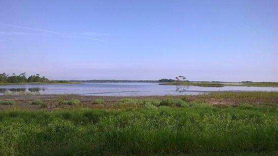 Gordons Pond: Rest stop with a bench along Gordon's Pond trail