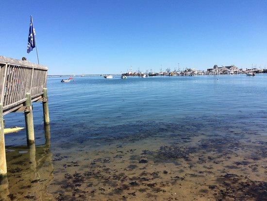 Harbor Lounge : photo0.jpg