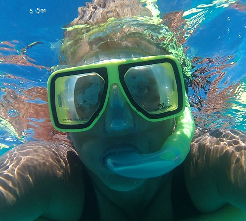 Mission Beach, Australia: Snorkelling!