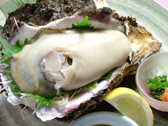 牡蠣 能登