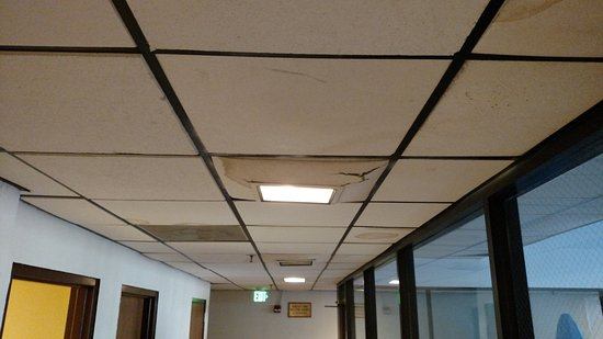 La Quinta Inn Suites Glenwood Springs Sagging Ceiling Tile In Same Square As Light