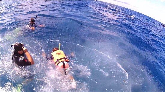 Buceo Xtabay: Mi esposa y mi hijo en su encuentro con el tiburón ballena.