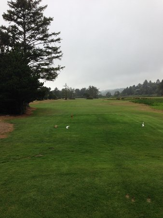 Neskowin, Орегон: Par4 First hole. Out of bounds all the way down the left