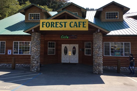 Image result for trees of mystery forest cafe