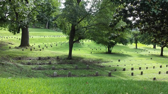 ‪‪Vicksburg National Military Park‬: This is the Union Cemetery and is a tiny portion of the graves‬