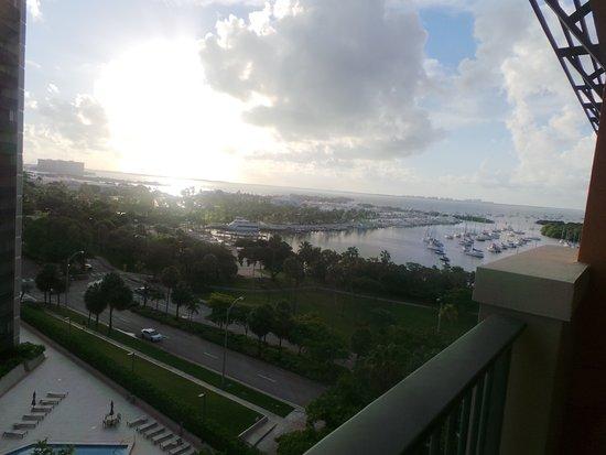 Great Condo/Hotel in Coconut Grove