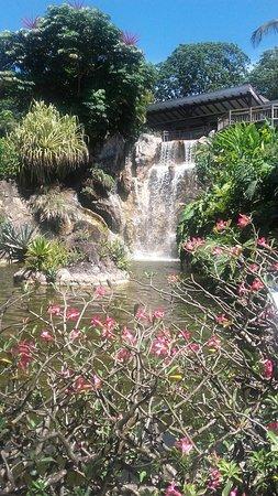 Deshaies, Guadeloupe: 20160823_134302_large.jpg
