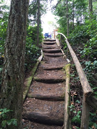 Heriot Bay, Canadá: steps up to main camp area