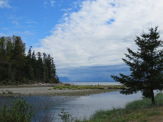 Black Creek, Canada: Overlooking the mouth of the Oyster River, next to the campgrounds