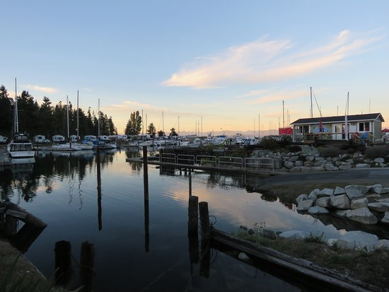Black Creek, Canada: Boat launch at the marina