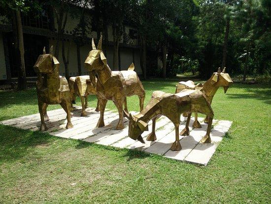 Provincia de Nan, Tailandia: Golden goat
