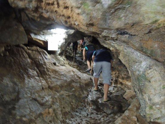 Irimizu Limestone Cave : 入り口近くの明るいAコースです