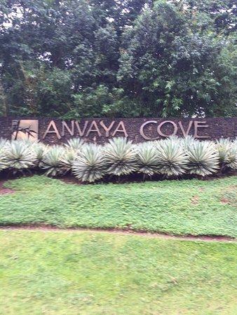Gambar Anvaya Cove Beach & Nature Club