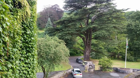 Crickhowell, UK: 20160822_105019_large.jpg