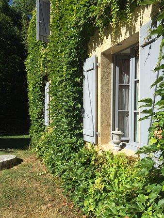 Auriac-du-Perigord, Fransa: Un posto piacevole in Dordogne, con piscina e un grande parco verde peccato che la sauna e il ja