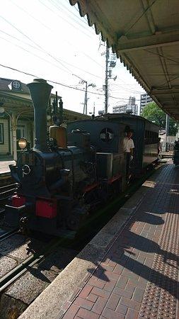 Bocchan Train: 坊っちゃん電車
