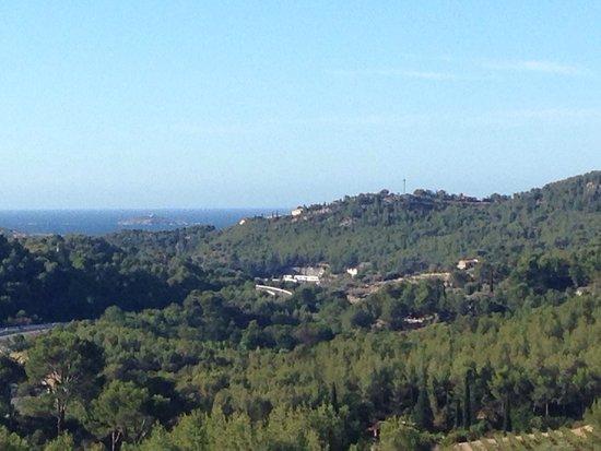 Ла-Кадьер-д'Азур, Франция: Cadre exceptionnel, vue dégagé sur les hauteurs face à la mer de Bandol et surtout accueil irrép