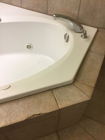 Microtel Inn & Suites by Wyndham Auburn : There is a tub in the middle of the room. This is the suite.