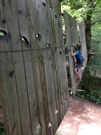 Parc Aventura Brasov: Blue line challenge for all ages
