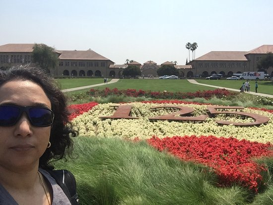 Palo Alto, Californië: photo3.jpg