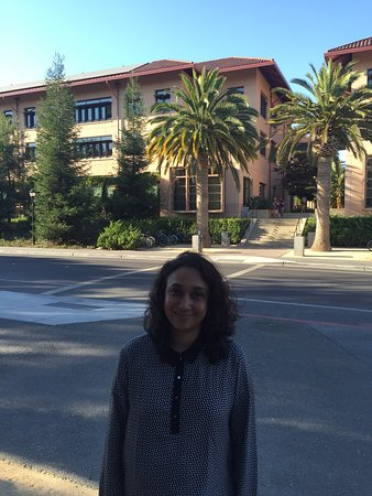 Palo Alto, CA: photo7.jpg