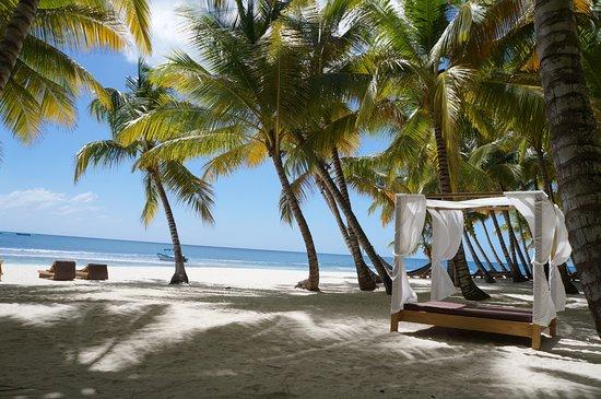 Bayahibe, Dominikanische Republik: La plage où l'on mange sur saona