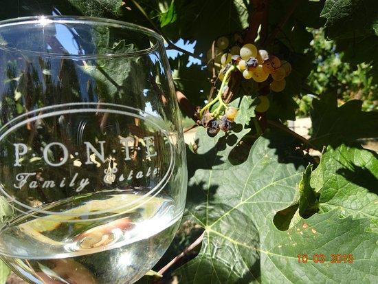 Temecula, Californien: ワイングラスとぶどう