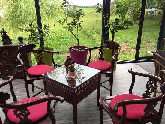 Dange-Saint-Romain, França: Dégustez votre Thé dans un lieu verdoyant