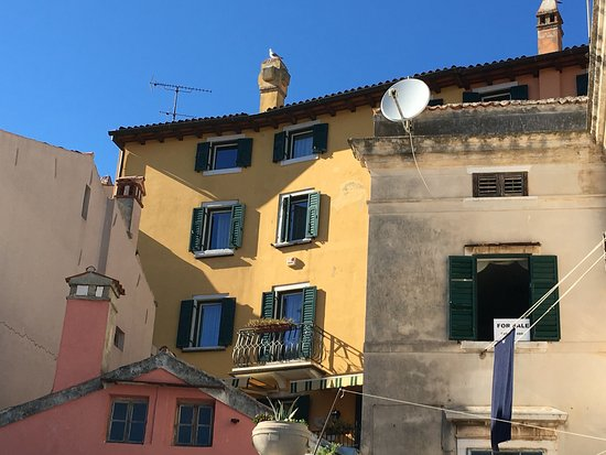 Villa Tuttorotto: photo2.jpg
