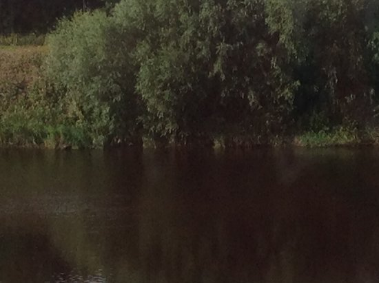 Samlesbury, UK: View if the river from our room. There is an outside dining area with the same view.