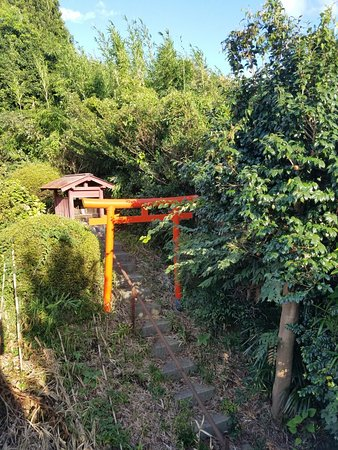 Ayase, اليابان: 20160824_163802_large.jpg