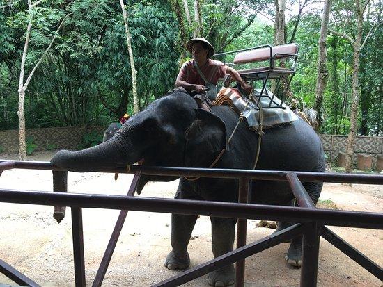 Chalong, Tailandia: photo5.jpg