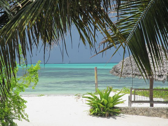 Kilima Kidogo Guesthouse: Beach Front