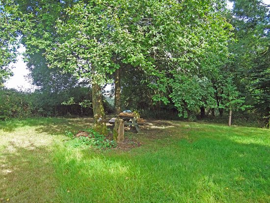 North Perrott, UK: Picnic area.