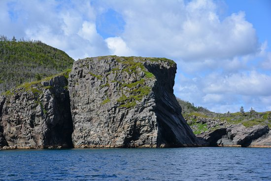 Trinity, Canadá: Nice Cliff At Entrance to Ireland's eye