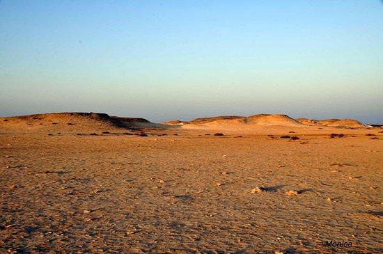 Al Khor, Catar: Solo árido!!