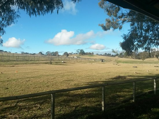 Picton, Australië: 20160721_143927_large.jpg