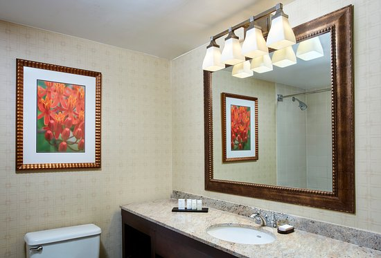 Parsippany, Nueva Jersey: Suite Bathroom