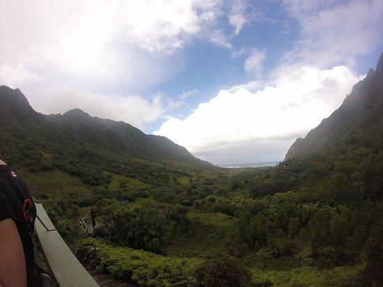Kaneohe, Hawái: Ziplines