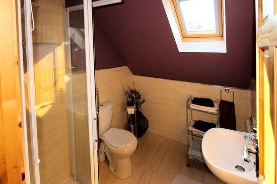 Portsalon, أيرلندا: Upper Bathroom with shower